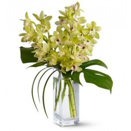 Букет от Екзотични орхидеи