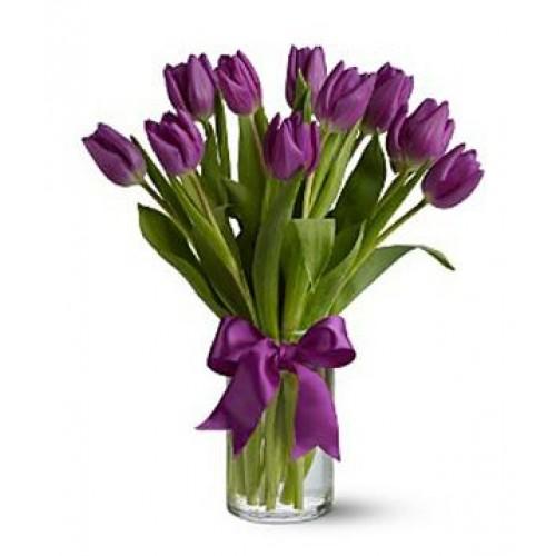 11 Първокласни Виолетови