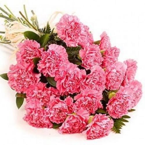 20бр. Розови карамфили