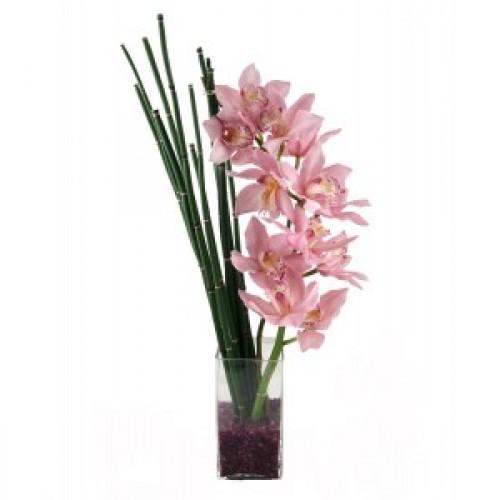 Елегантни розови орхидеи