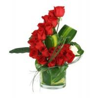 Вълна от червени рози