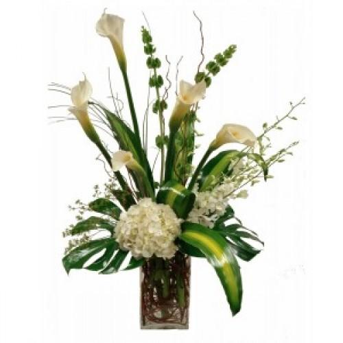 Бяла кала и орхидеи