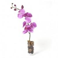 Орхидея и шоколади