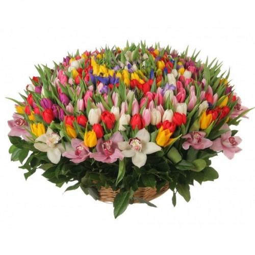 Веселата пролет - аранжировка от 301 лалета и пролетни цветя