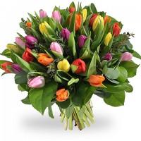 Поръчай от 15 до 101 пъстроцветни лалета